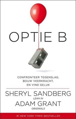 Optie B confronteer tegenslag, bouw veerkracht en vind geluk