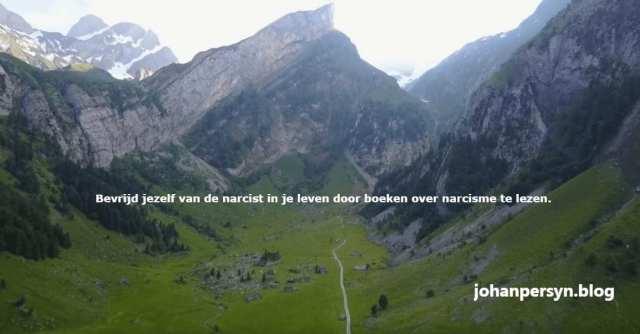 boeken over narcisme veerkracht transformatie trauma