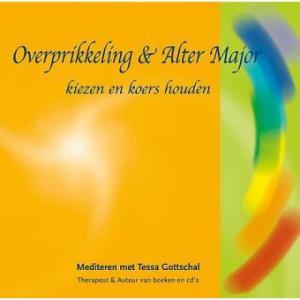 foto cover boek Overprikkeling & Alter Major kiezen en koers houden