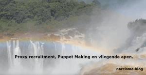 kameraad van de narcist proxy recruitment, puppet making en vliegende apen
