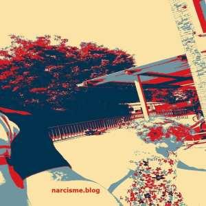 speelplaats met kind narcisme blog