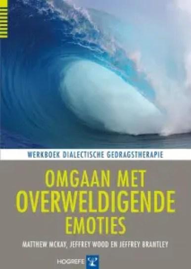 cover boek omgaan met overweldigende emoties