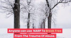 bomen in de sneeuw voor narcisme.blog