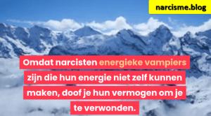 bergtoppen in de sneeuw voor narcisme.blog