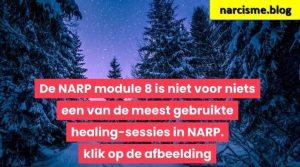 bos in de sneeuw voor narcisme.blog