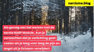bos in de sneeuw voor narcisme.blog hoe ptss voelt