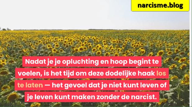 zonnebloemenveld voor narcisme.blog