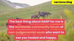 paarden in de bergen voor narcisme.blog, programma van Melanie Tonia Evans