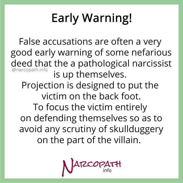 NPD's false accusations - early warning of NPD abuse