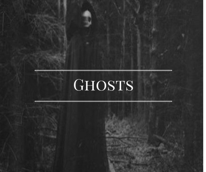 Ghosts – Knowing the Narcissist : HG Tudor