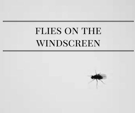 flies-on-thewindscreen