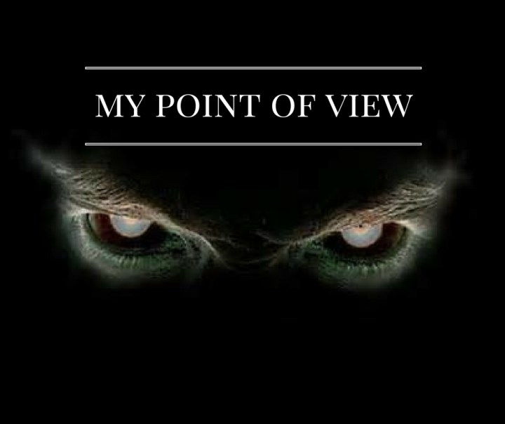 my-point-of-view