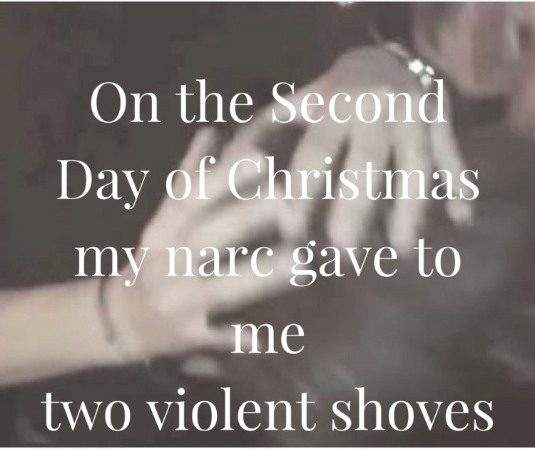 on-the-secondday-of-christmasmy-narc-gave-to-metwo-violent-shoves