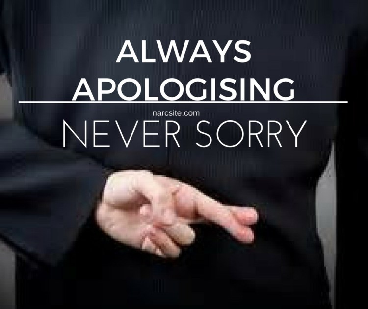 always-apologising