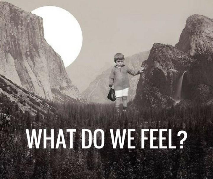 WHAT DO WE FEEL_