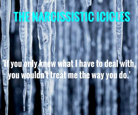 THE NARCISSISTIC ICICLES - no 12