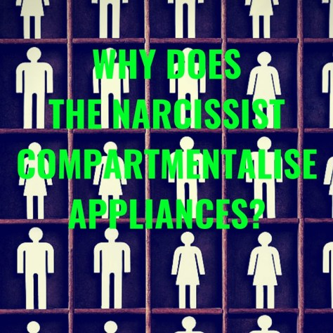 WHY DOESTHE NARCISSISTCOMPARTMENTALISEAPPLIANCES?