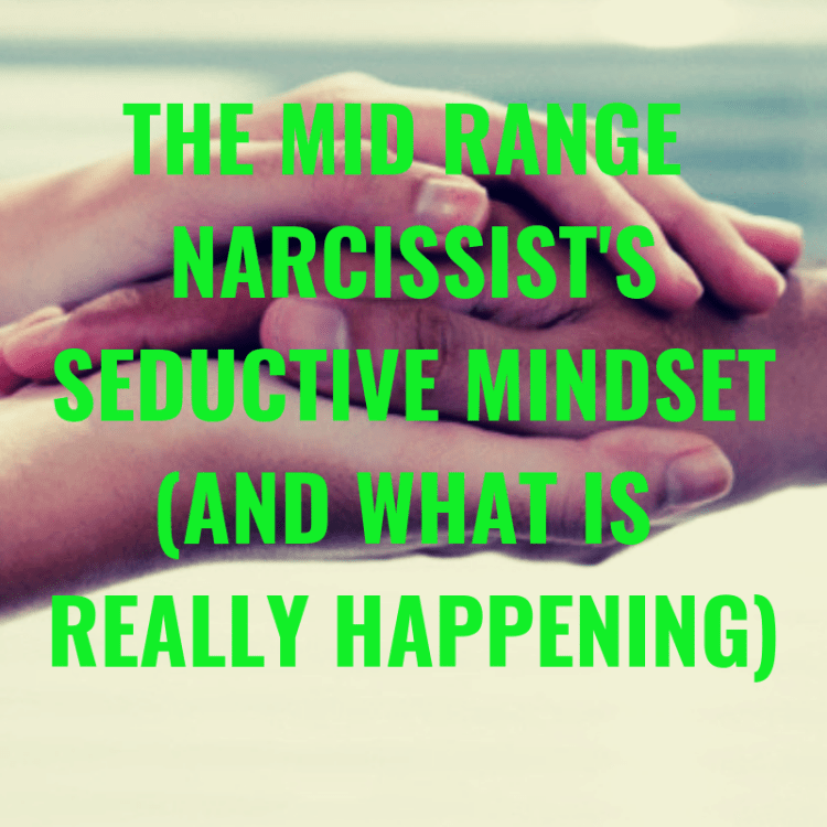 THE MID RANGE NARCISSIST'S SEDUCTIVE MINDSET (AND WHAT IS REALLY HAPPENING)