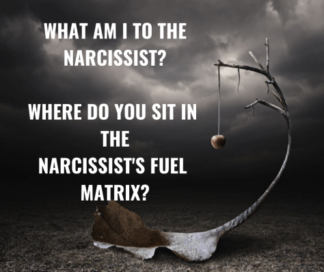 WHAT AM I TO THE NARCISSIST_ WHERE DO YOU SIT IN THE NARCISSIST'S FUEL MATRIX_
