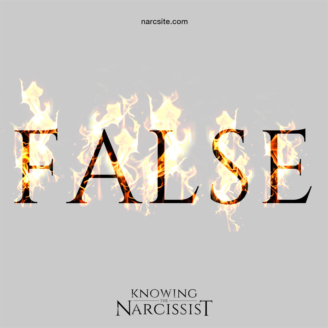 False Champion | Knowing the Narcissist