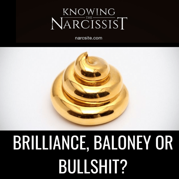 BRILLIANCE, BALONEY OR BULLSHIT?
