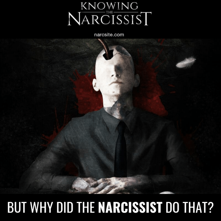 BUT WHY DID THE NARCISSIST DO THAT?