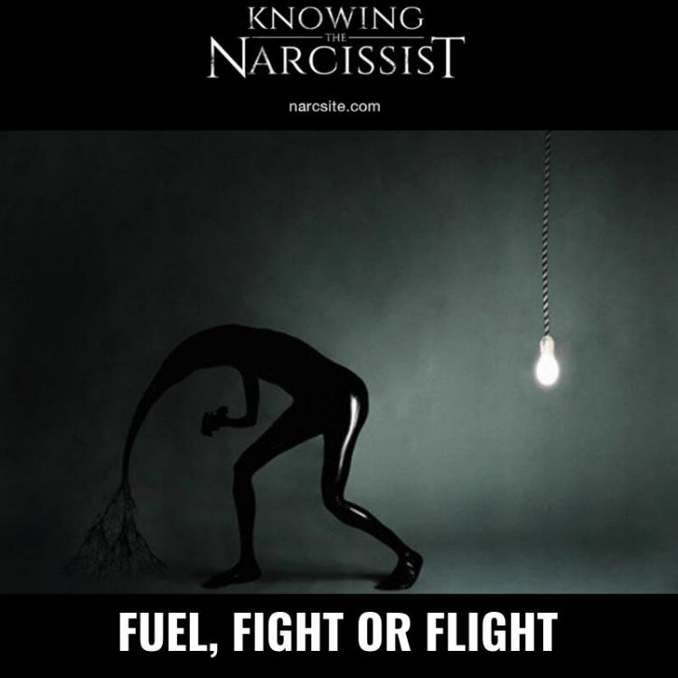 FUEL, FIGHT OR FLIGHT