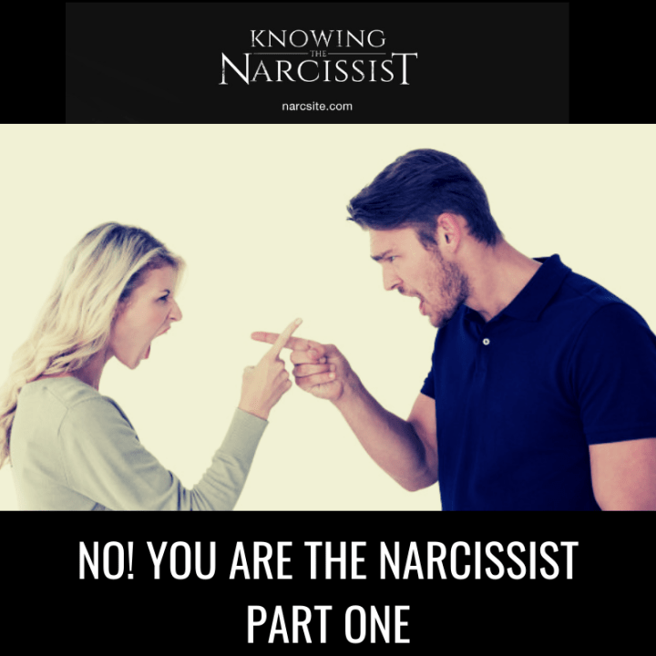 NO! YOU ARE THE NARCISSIST PART ONE