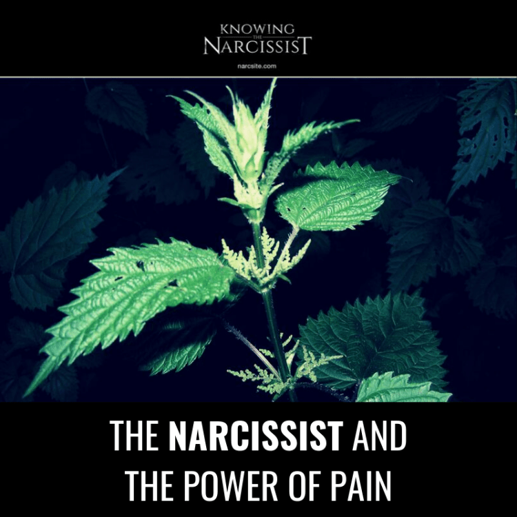 THE NARCISSIST AND THE POWER OF PAIN