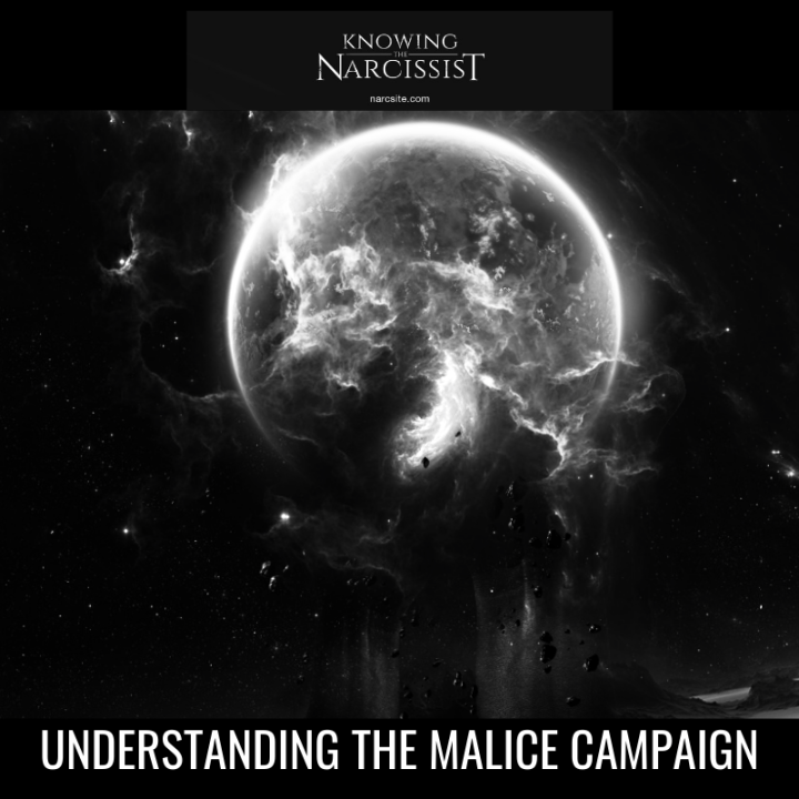 UNDERSTANDING THE MALICE CAMPAIGN