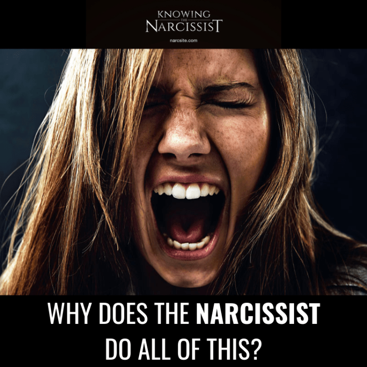 WHY DOES THE NARCISSIST DO ALL OF THIS?