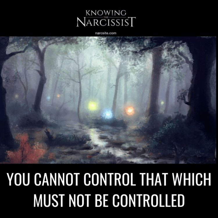 YOU CANNOT CONTROL THAT WHICH MUST NOT BE CONTROLLED