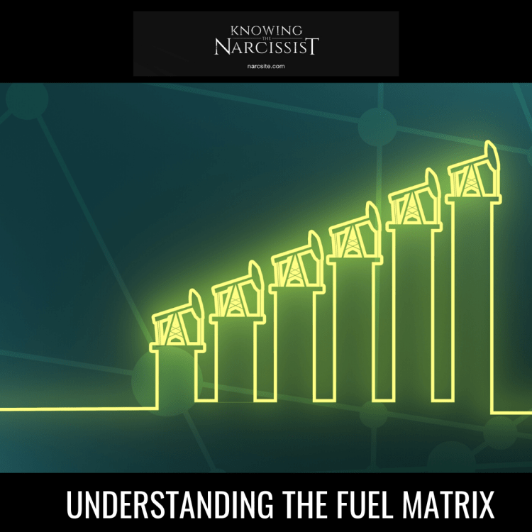 UNDERSTANDING THE FUEL MATRIX