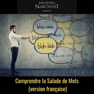 Comprendre la Salade de Mots (version française)-2