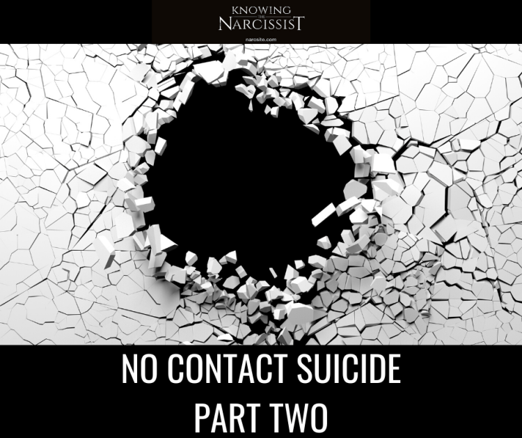 NO CONTACT SUICIDE PART TWO