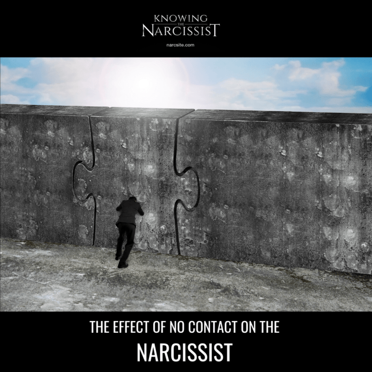 THE-EFFECT-OF-NO-CONTACT-ON-THE-NARCISSIST