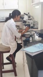 Diagnosing Plant Diseases