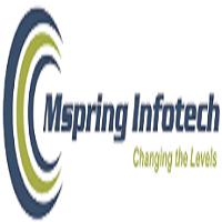 Mspring Info Tech