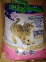 *Werbung* Produkttest BioCats Duo Active Katzenstreu 51