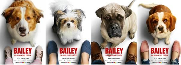 Bailey - Ein Hund kehrt zurück (2019) unsere Meinung zum Film 1