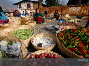 1024x768_download_bhutan_market
