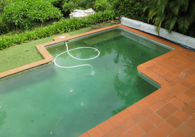 perawatan air kolam renang.png1.png
