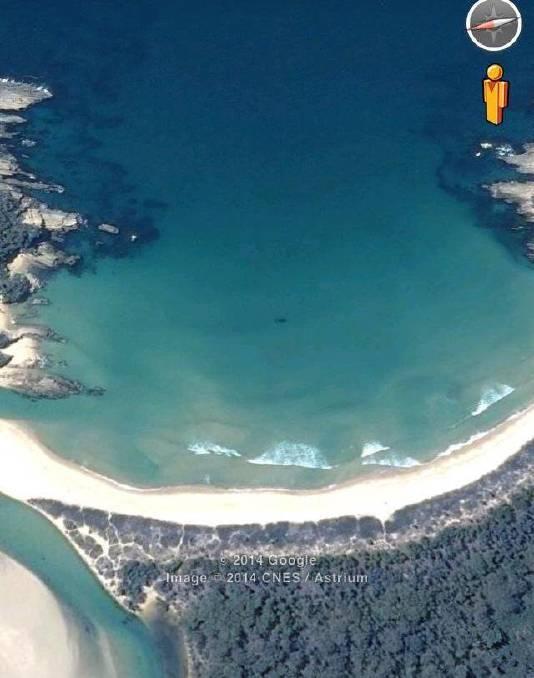 Sharks On Google Maps : sharks, google, Mystery, Creature, Google, Earth, Whale?, Narooma, Narooma,