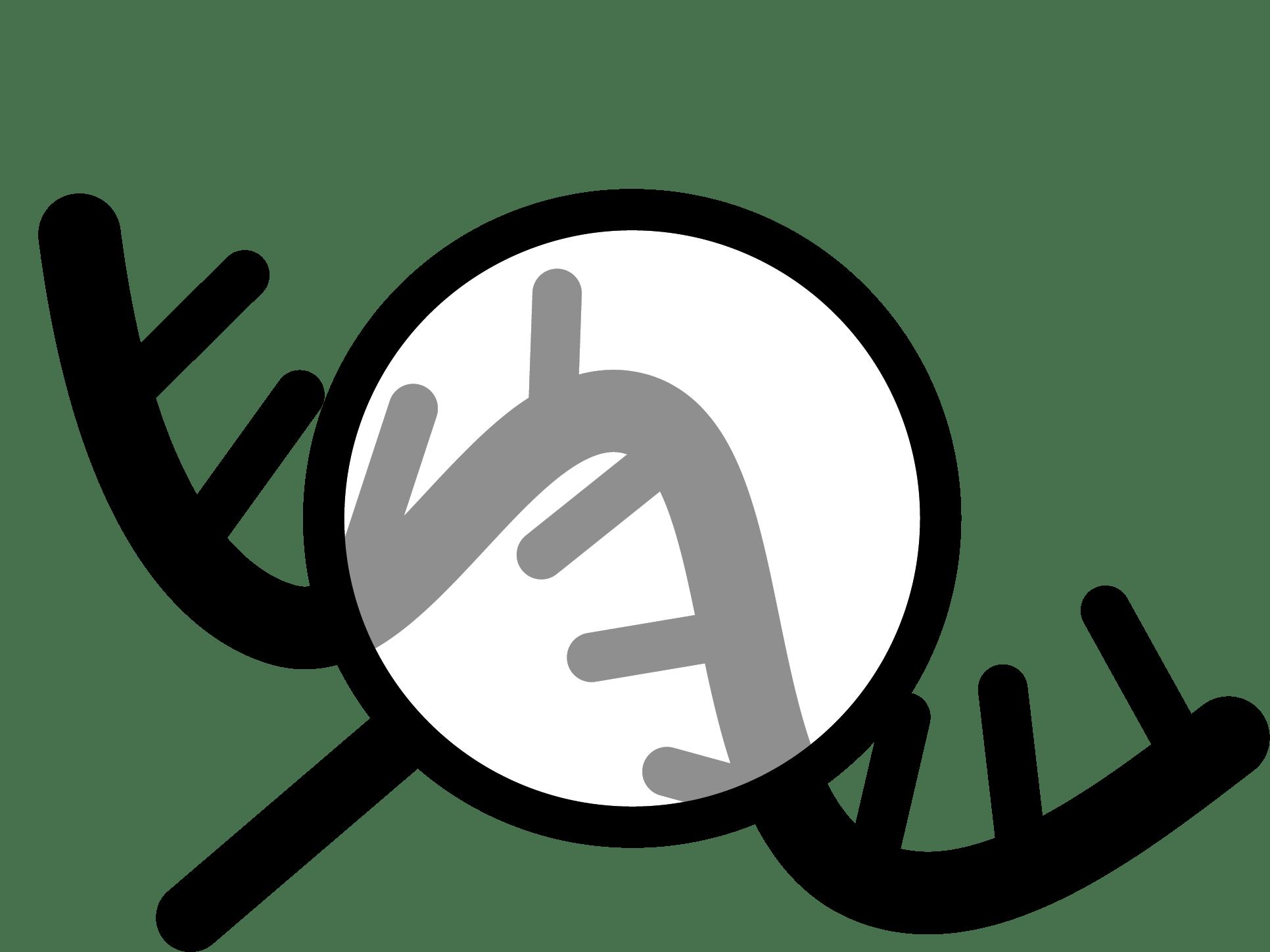 Narry Kim Lab | RNA biology