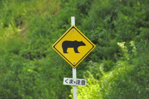 熊・注意の標識