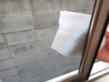 網戸を拭き掃除