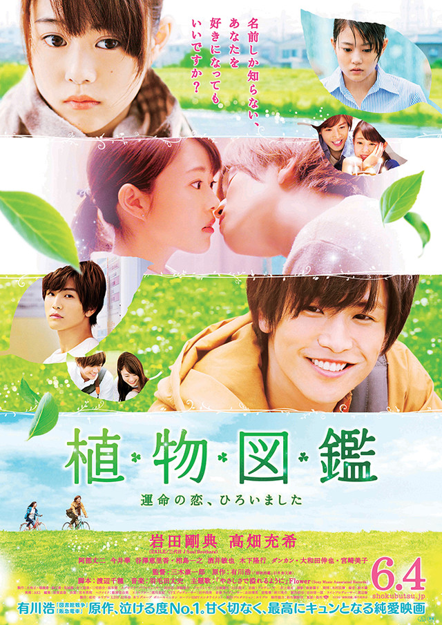 Evergreen Love (2016) Subtitle Indonesia