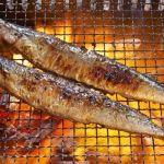 バーベキューで上手に秋刀魚の塩焼きをするコツ、刺身でいただく際の寄生虫(アニサキス)の注意点