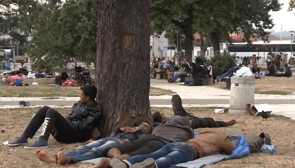 POPLAVA MIGRANATA: U Beogradu uhapšeno preko 20 ilegalaca! TIHA INVAZIJA NA SRBIJU… 1
