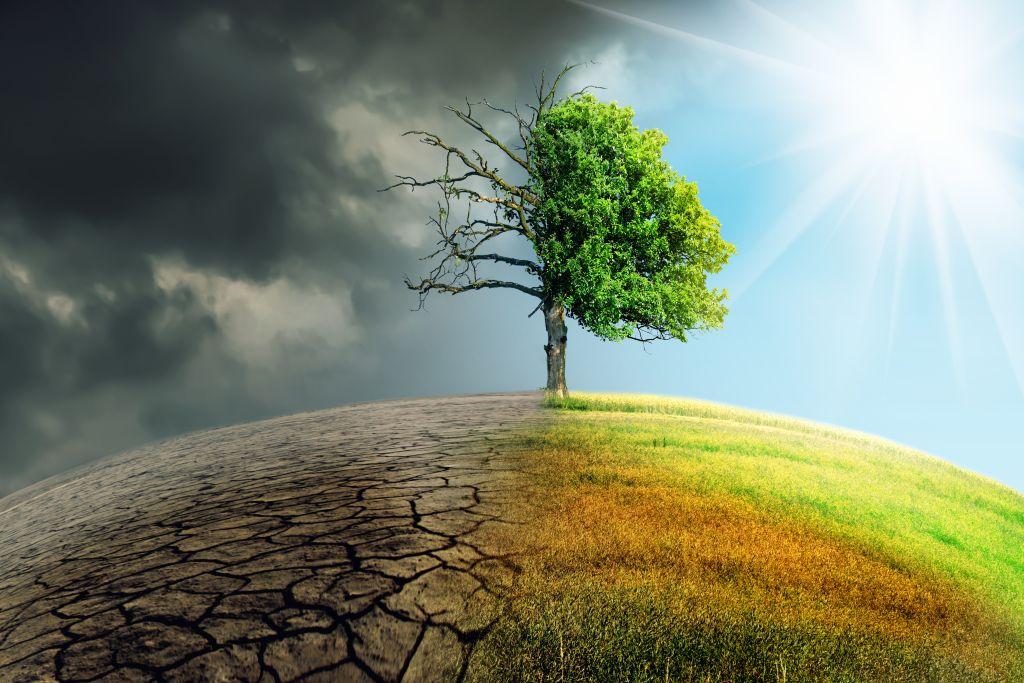 KLIMATOLOŠKI STRUČNJACI: Sve će se promeniti, ljudi nisu svesni šta ih čeka! 1